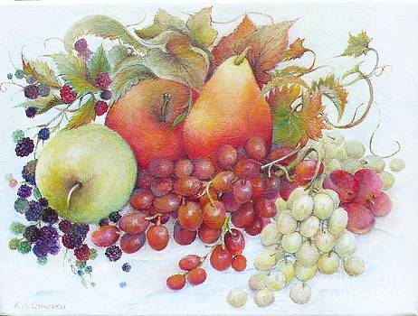 Autumn Fruits  / sold by Barbara Anna Cichocka