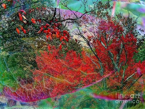 Autumn Fusion 3 by Jeff Breiman