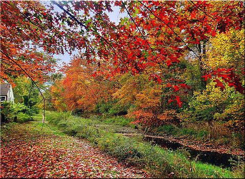 Autumn Glory by Mikki Cucuzzo