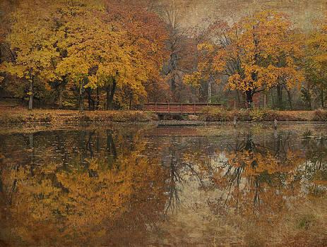 Autumn Golds At Deer Path Park by Pat Abbott