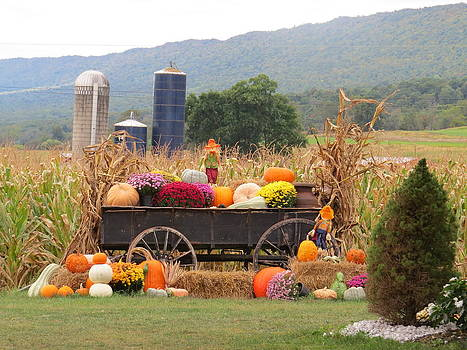 Autumn Harvest in Wagon by Jeanette Oberholtzer