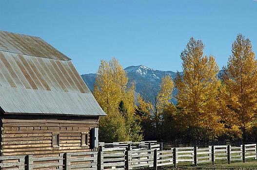 Autumn in Bozeman Montana by Bruce Gourley