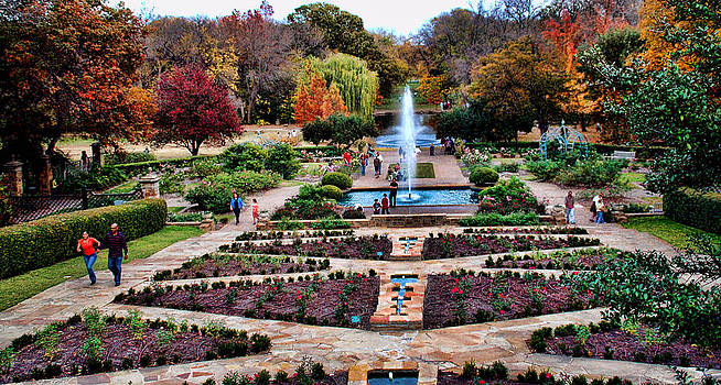Autumn In Fort Worth by Janet Maloy