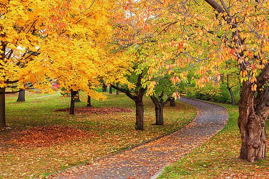 Autumn in High Park by India Blue photos