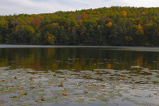 Autumn In Lake Taghkanic State Park by Steve Belovarich