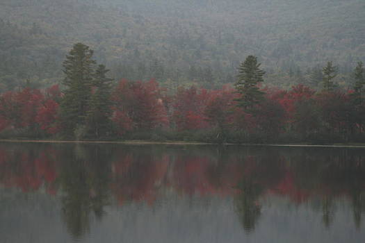 Autumn in Maine by Terry Burgess
