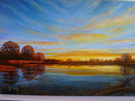 Autumn in Richmond park. by Janet Silkoff