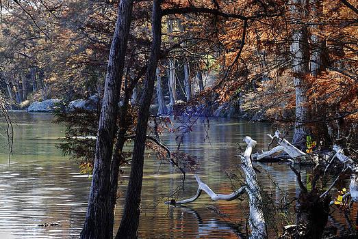Autumn In Texas by Jerry Moffett
