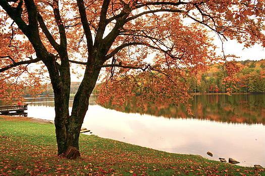 Byron Varvarigos - Autumn In The Butternut Valley-two