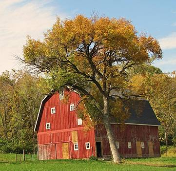 Autumn in the Country by Lori Frisch