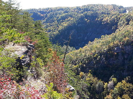 Autumn in the Gorge by Brenda Stevens Fanning