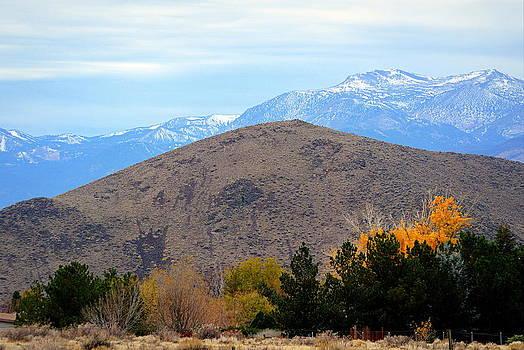 Autumn in the High Desert by AJ  Schibig