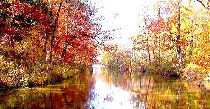 Autumn in the Ozark Mountains by Brian Hubmann