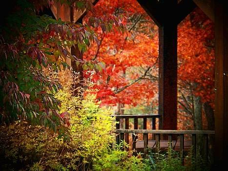 Autumn in the Park by Joyce Kimble Smith