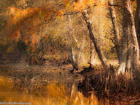 Autumn in the south by Kim Loftis