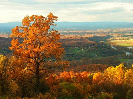 Autumn in the Valley by Joyce Kimble Smith