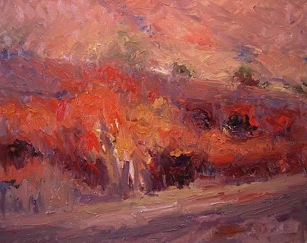 Autumn in twilight by R W Goetting