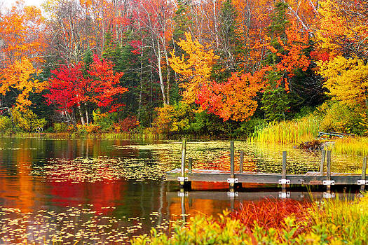Autumn in VT by Meghan OHare