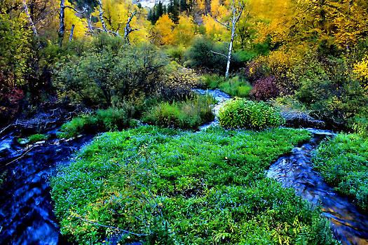 Matthew Winn - Autumn in Wyoming