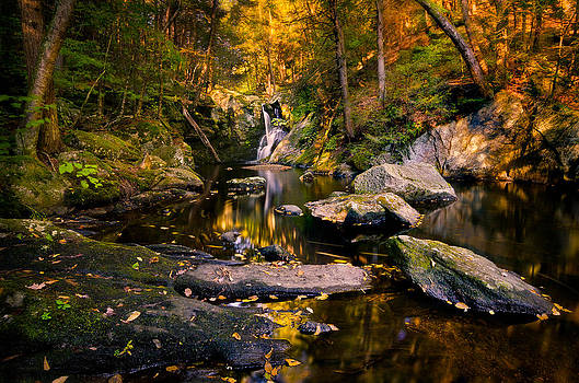 Autumn is Calling by Craig Szymanski