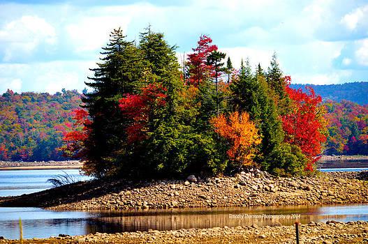 Autumn Island by Timothy Thornton
