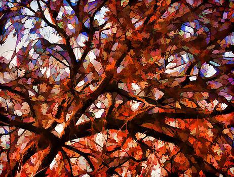 Autumn by Jeff R Clow