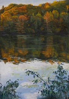 Autumn Joy by Nancy Yang