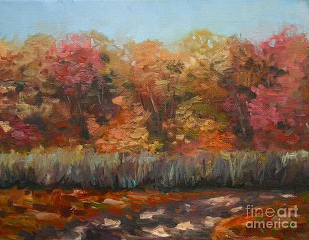 Autumn Kennedy Dells Park by Jane Simonson