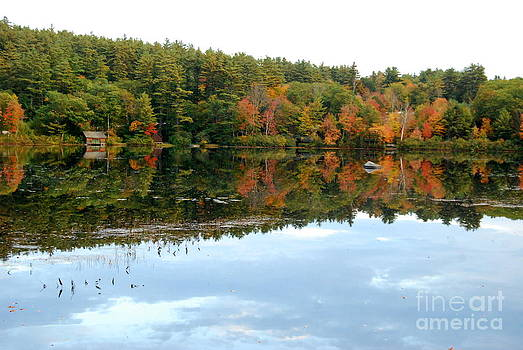 Autumn Lakeside by Eunice Miller