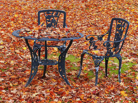 Autumn Lawn Furniture by Jim  Wallace