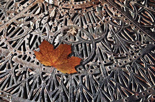 Autumn Leave on Iron Grate by Larry Butterworth