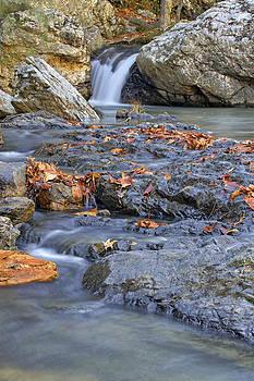 Jason Politte - Autumn Leaves at Little Missouri Falls - Arkansas - Waterfall