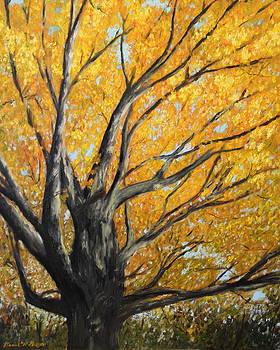 Autumn Leaves by Daniel W Green