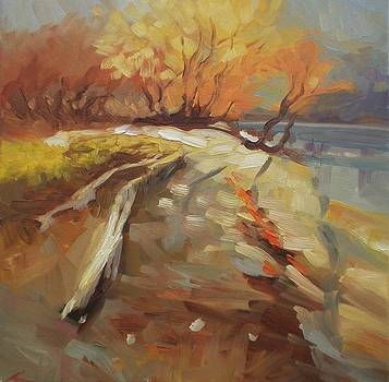 Autumn light by Elena Sokolova