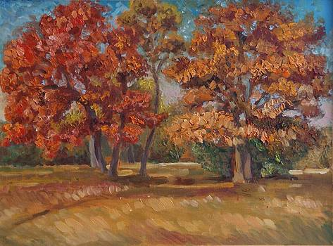 Autumn Maple trees by Efim Melnik