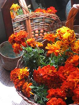 Autumn Marigolds by Deb Martin-Webster