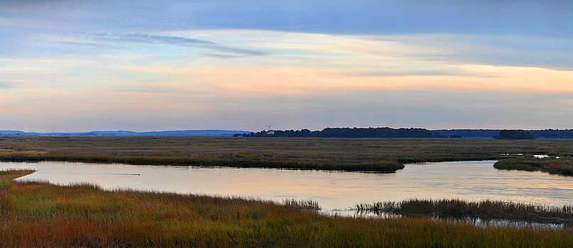 Autumn Marsh by John Brown