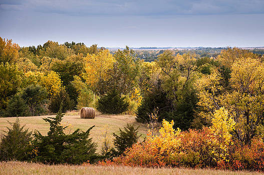Autumn Meadow by Kerri Garrison