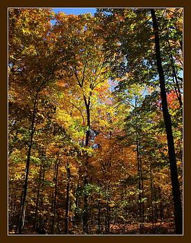 Rosanne Jordan - Autumn Memories at the Morton Arboretum
