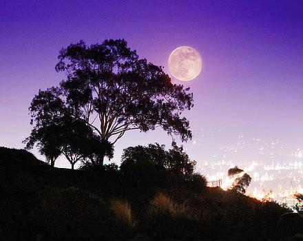 Autumn Moon Over San Diego by John Castell