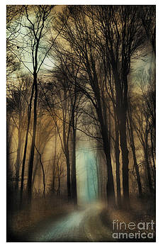 Autumn moonlight by Gina Signore