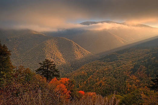 Autumn morning by Andrey Trifonov