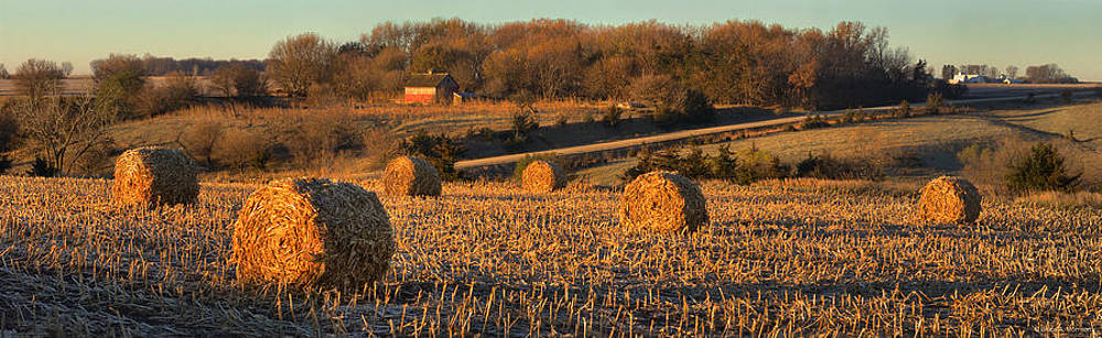 Autumn Morning Bales by Bruce Morrison
