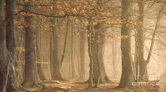 Autumn Morning Fog Oil Painting by Heinz G Mielke
