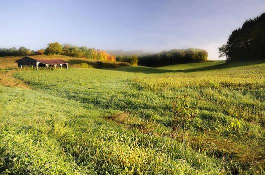 Autumn Morning by Paul Geilfuss