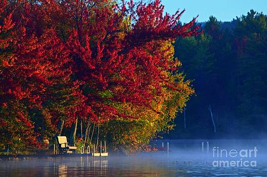 Autumn Morning by Sharon L Stacy