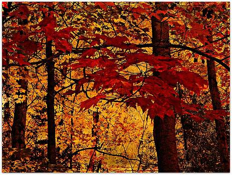 Autumn Mosiac  by Dianne  Lacourciere