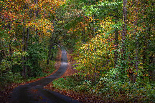 Autumn Mountain Road by William Schmid