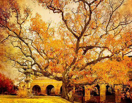 Ludmila Nayvelt - Autumn Oak
