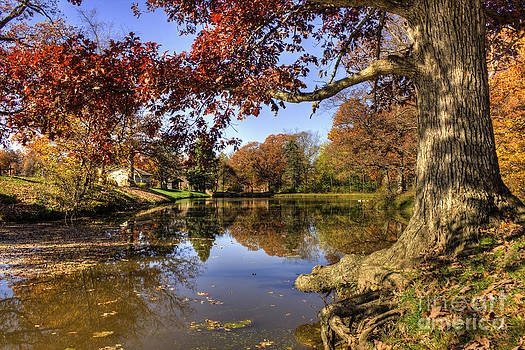 Autumn on the Pond by Scott Wood